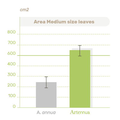 Area size plant graphic