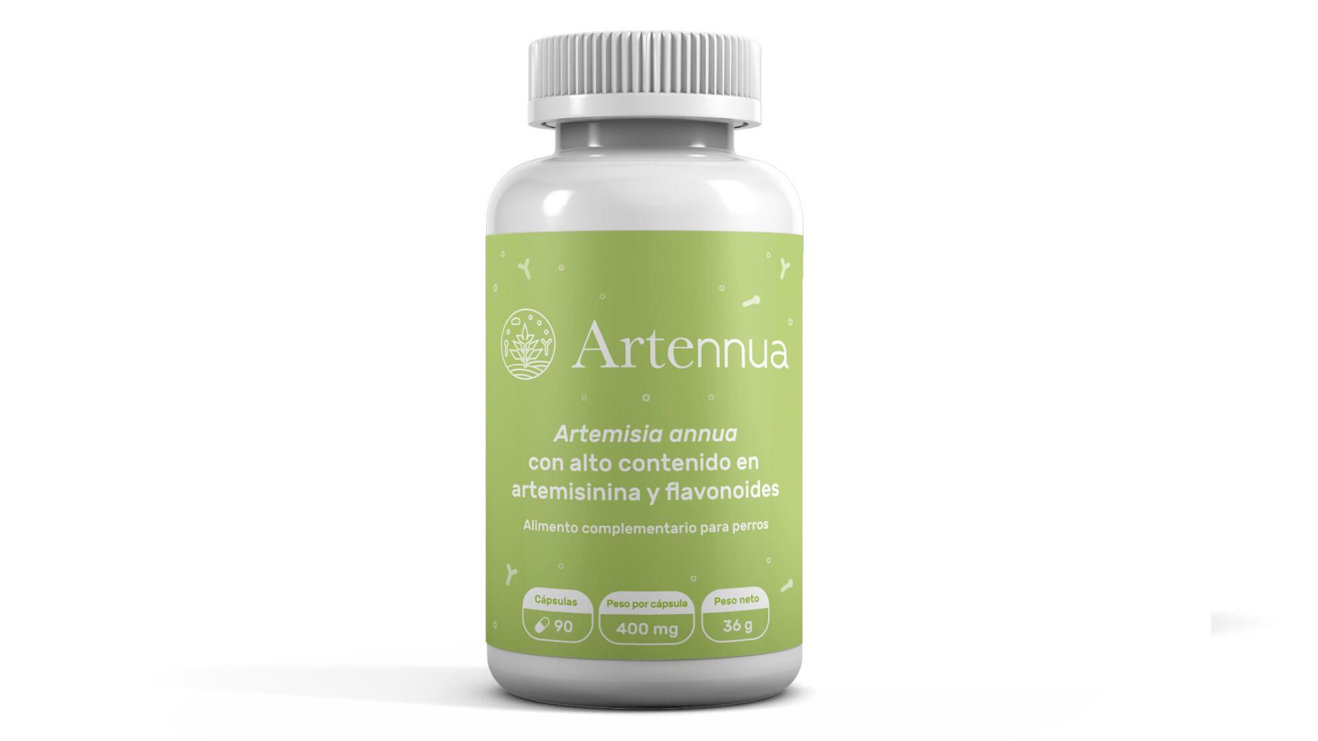 artemisia annua capsules